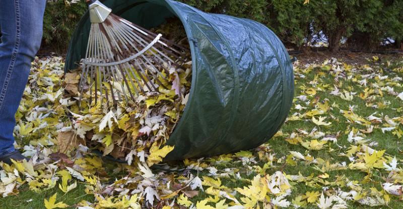 Vor der großen Kälte - Das braucht Ihr Garten im Herbst