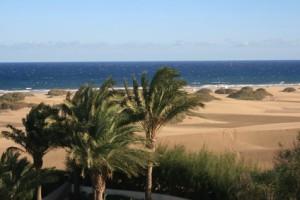 Die Kanarischen Inseln – Frühling für immer